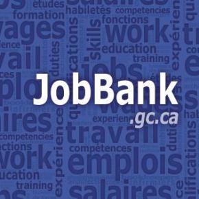 Job Market Trends and News in Alberta