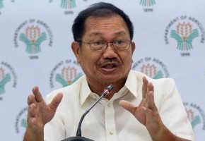 'Usman' damage to agriculture reaches P1-B: Piñol